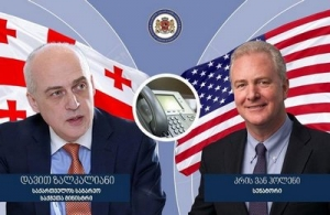 David Zalkaliani held a telephone conversation with U.S Senator