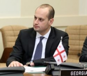 It is once more confirmed that European Institutes support Georgia-Mikheil Janelidze