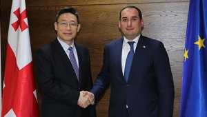 Dimitry Kumsishvili Met Chinese Company TCC Management