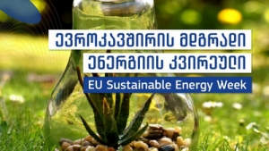 EU supports information campaign in Georgia for EU Sustainable Energy Week 2020