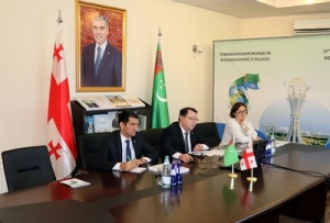 The Embassy of Turkmenistan in Georgia held an  International online Conference  dedicated to the 25th Anniversary of Permanent Neutrality of Turkmenistan and the 75thAnniversary of the UN