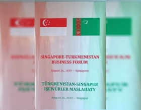 Investment potential of oil and gas complex of Turkmenistan is presented in Singapore