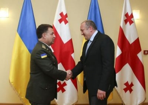 President Margvelashvili Holds a Meeting with the Minister of Defence of Ukraine