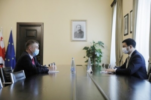 The meeting of Archil Talakvadze with the Head of CoE Georgia Office